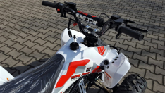 ACCESS AMS Mini Sport 110
