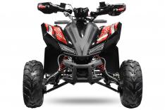 Rizzo RS8-3G midi Quad 125cc 8 Zoll Semi- Automatik + RG Platin Line