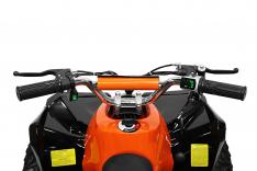 Avenger Eco mini Quad 1000W 48V 6 Zoll Metallic